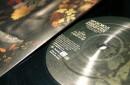 Vinyl-IMHIASPbb